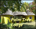 Palm Tree Lodge