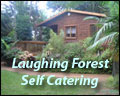 The Laughing Forest