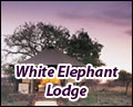 White Elephant Lodge