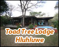 Toad Tree Lodge